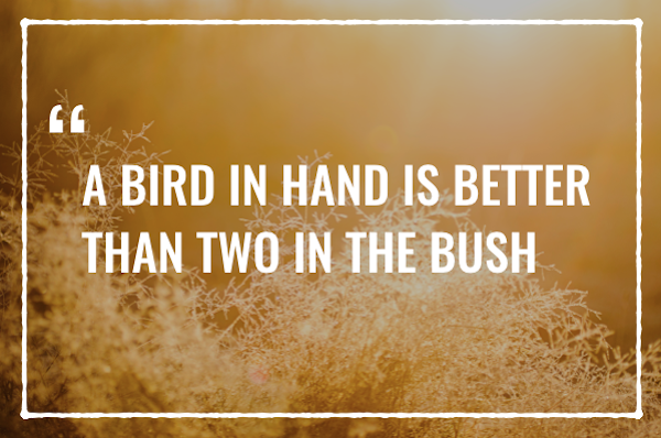 A bird in hand is better than two in the bush