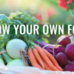 How to Grow Your Own Food in a Backyard Garden